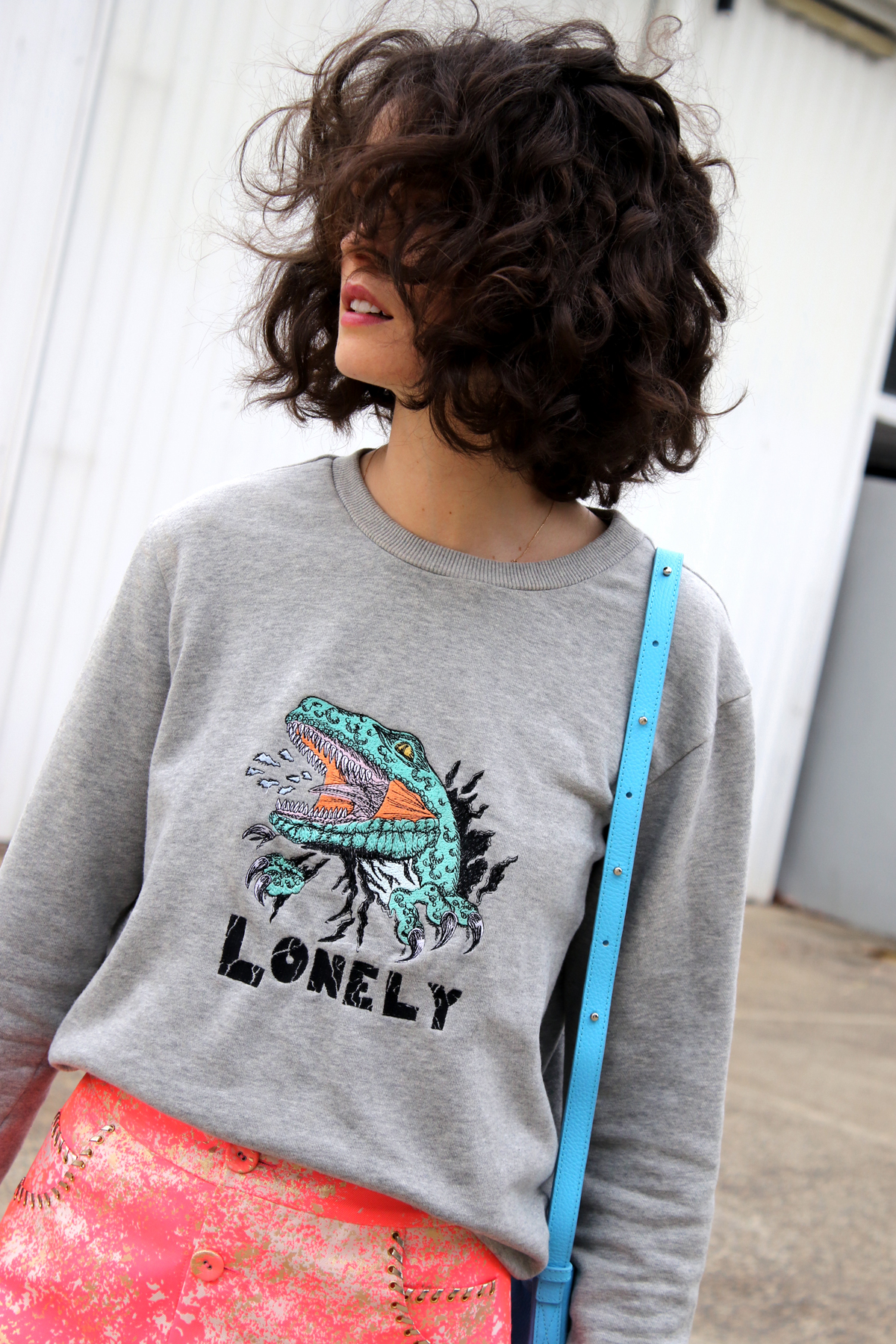 Lonely label dinosaur sweater