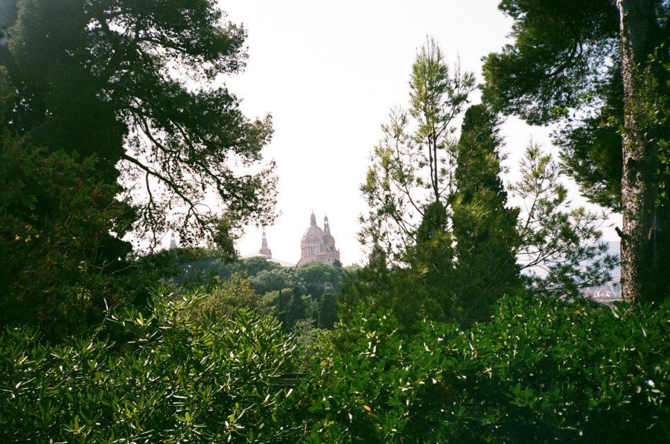 Barcelona Guide chloe hill
